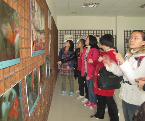 中华白海豚研究和保护